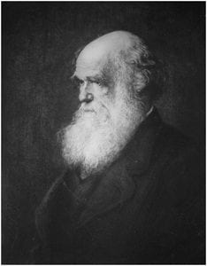 Oil painting of Darwin by Walter William Ouless Etching by Paul Aldophe Rajon