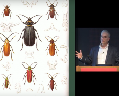 Screenshot from Who Discovered Evolution lecture at the Harvard Museum of Natural History